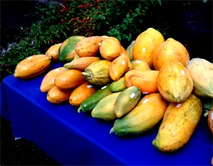 Selling ripe papayas at the farmer's market.