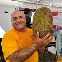 Where to buy jackfruit in Central Florida: 'The Jackfruit King' at Mustang Market