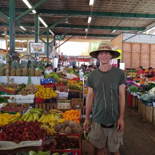 Where to get tropical fruits in South Florida – Redland
