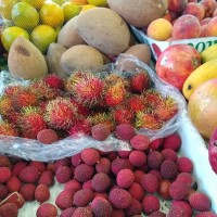 Where to get tropical fruits in South Florida - Redland Market Village